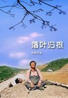 plakat - W stronę domu (2007)