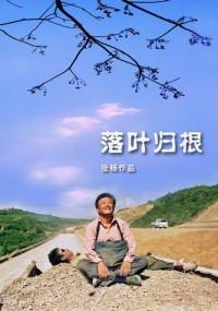 W stronę domu (2007) plakat