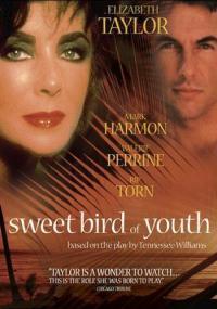 Słodki ptak młodości (1989) plakat