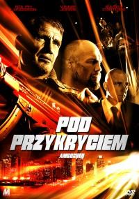 Pod przykryciem (2013) plakat