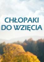 plakat - Chłopaki do wzięcia (2012)