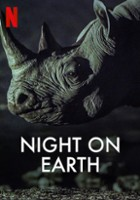 Ziemia nocą