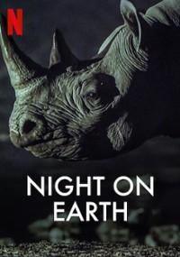 Ziemia nocą (2020) plakat