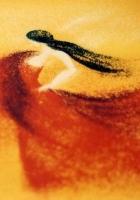 Carmen suita (1994) plakat