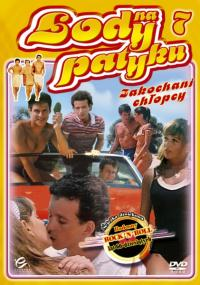 Lody na patyku 7: Zakochani chłopcy (1987) plakat