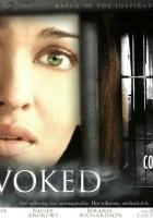 Provoked: A True Story (2006) plakat