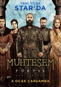 Wspaniałe stulecie (2011) plakat