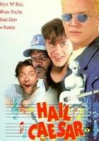 plakat - Szalone kłopoty (1994)