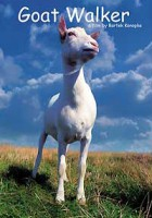 Ballada o kozie