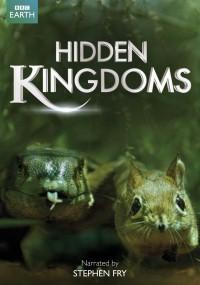 Ukryte królestwa (2014) plakat
