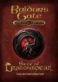 Baldur's Gate: Siege of Dragonspear (2016) plakat