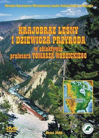 Krajobraz leśny i dziewicza przyroda w obiektywie profesora Tomasza Wodzickiego