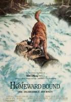 plakat - Niezwykła podróż (1993)