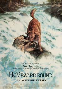 Niezwykła podróż (1993) plakat