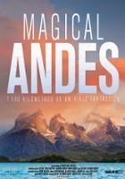 plakat - Magiczne Andy (2019)