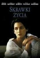 plakat - Skrawki życia (1995)