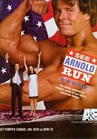 Kampania Arnolda (2005) plakat