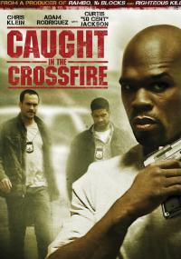 Caught in the Crossfire (2010) plakat