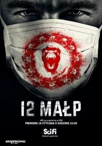 12 małp (2015) plakat