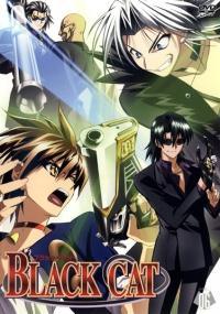 Black Cat (2005) plakat