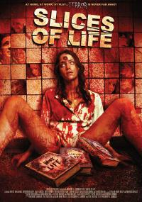 Slices of Life (2010) plakat