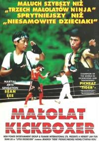 Małolat kickboxer (1992) plakat