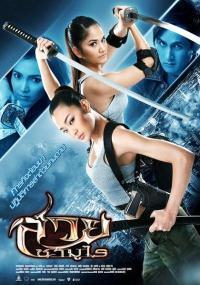 Final Target (2009) plakat