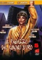 Wojownik karate 5 (1992) plakat