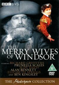 Wesołe kumoszki z Windsoru (1982) plakat