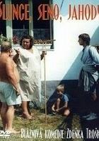 Słońce, siano, truskawki (1984) plakat