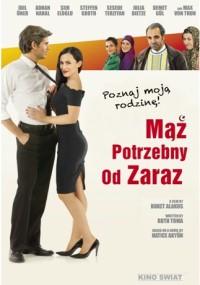 Mąż potrzebny od zaraz (2013) plakat