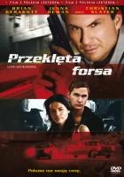 plakat - Przeklęta forsa (2008)