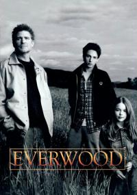 Everwood (2002) plakat