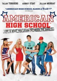 American High School (2009) plakat