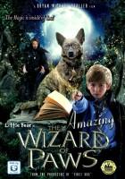 Oswald - magiczny pies