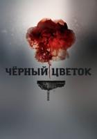 plakat - Czarna róża (2016)