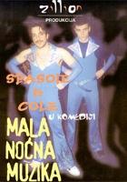Mala noćna muzika (2002) plakat