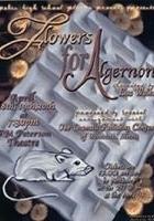 Kwiaty dla Algernona