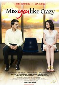 Miss You Like Crazy (2010) plakat