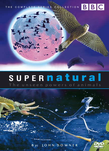 Supernatural: The Unseen Powers of Animals