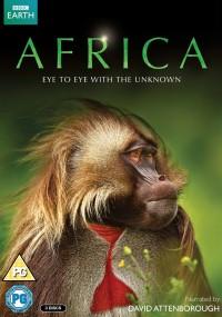 Afryka (2013) plakat