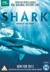 Rekin (2015) plakat