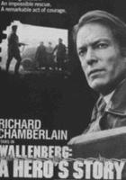 Wallenberg (1985) plakat