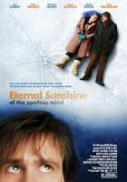 Zakochany bez pamięci(2004)