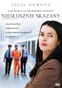 Niesłusznie skazany (2010) plakat