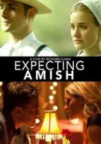 Expecting Amish (2014) plakat