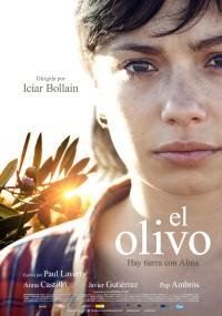 Drzewko oliwne (2016) plakat