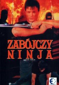 Zabójczy ninja (1992) plakat