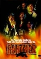 Czarne Pantery (1995) plakat