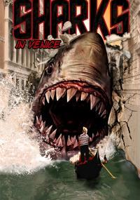 Rekin w Wenecji (2008) plakat